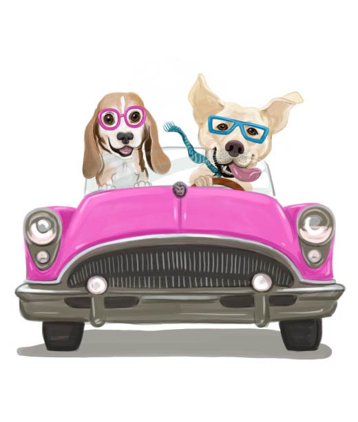 Two Dogs Driving Cabriolet Car Caricature
