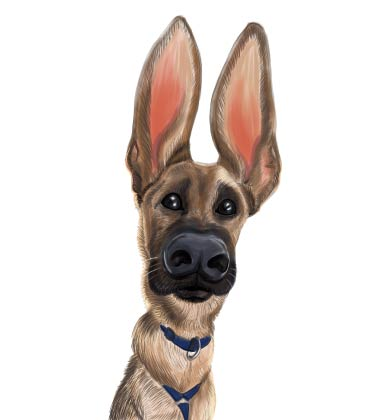 Funny Caricature of Dog with large ears